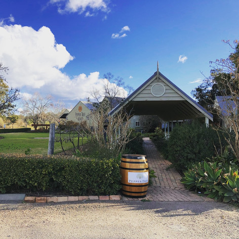 Pepper Tree Wines
