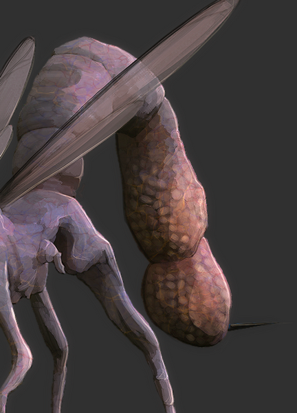 Texture of the tail