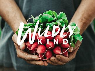 Wildly Kind_main image-01.jpg