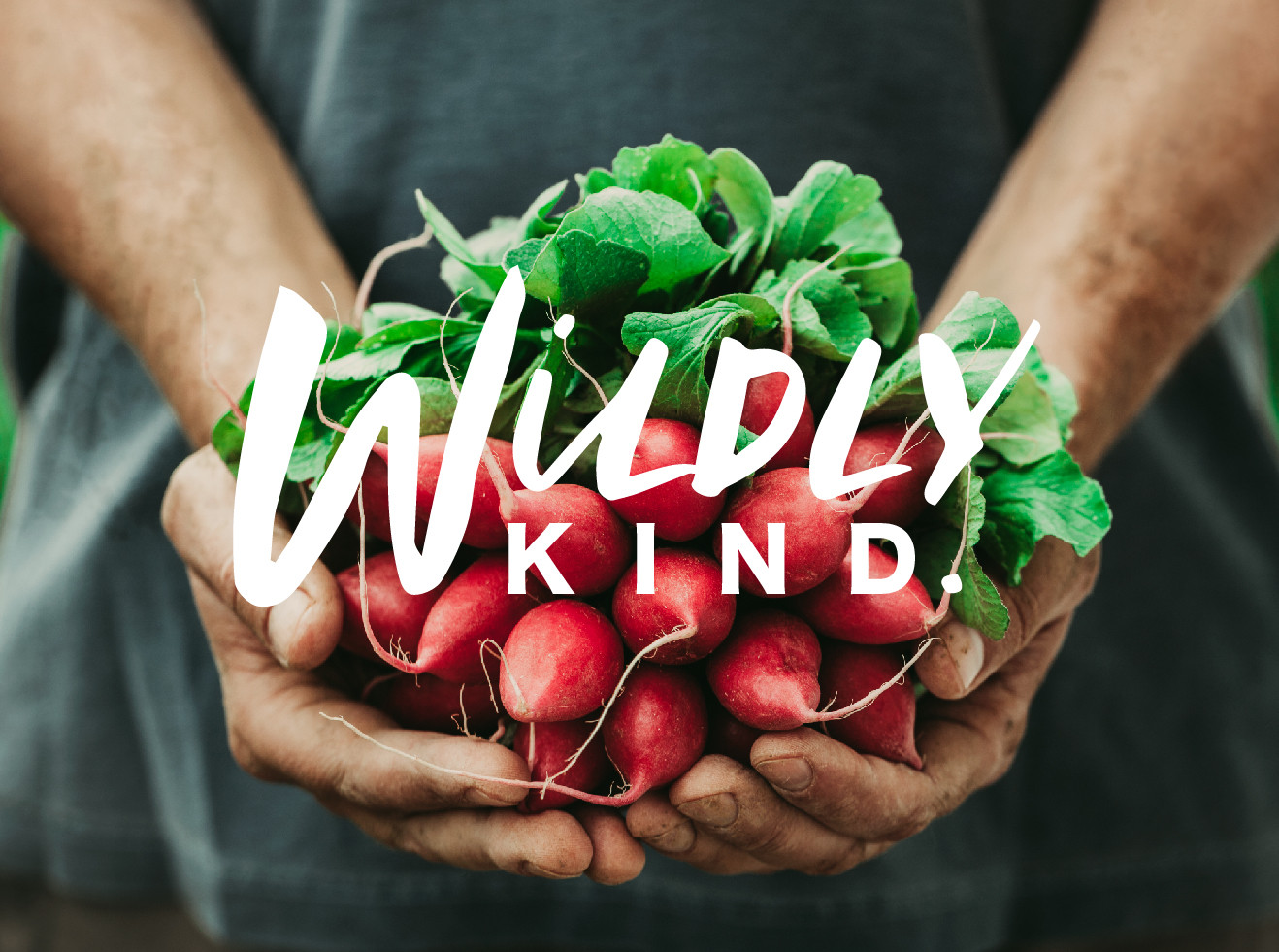 Wildly Kind