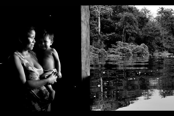 Volta olhar à Amazônia 4