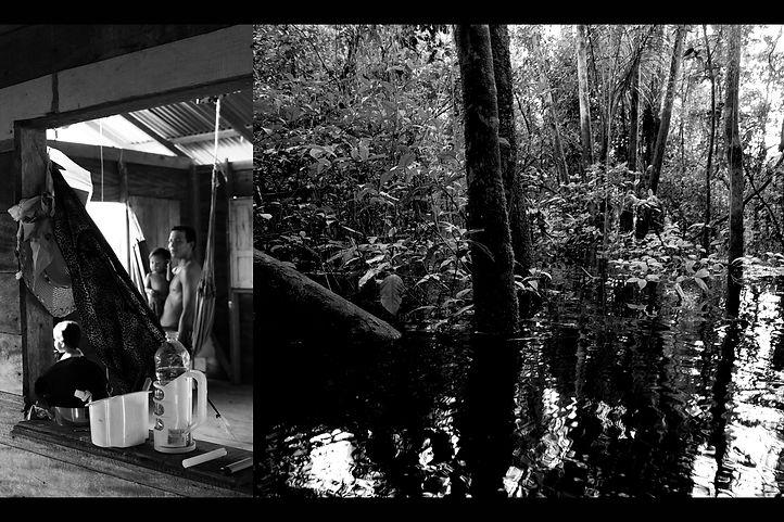 Volta olhar à Amazônia 1