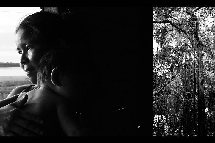 Volta olhar à Amazônia 2