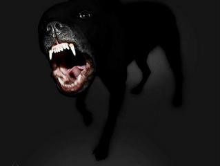 CashTF - Big Dawg (Prod by Supah Ace)