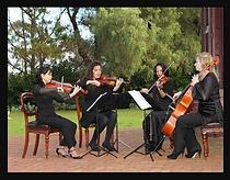 String quartet.png