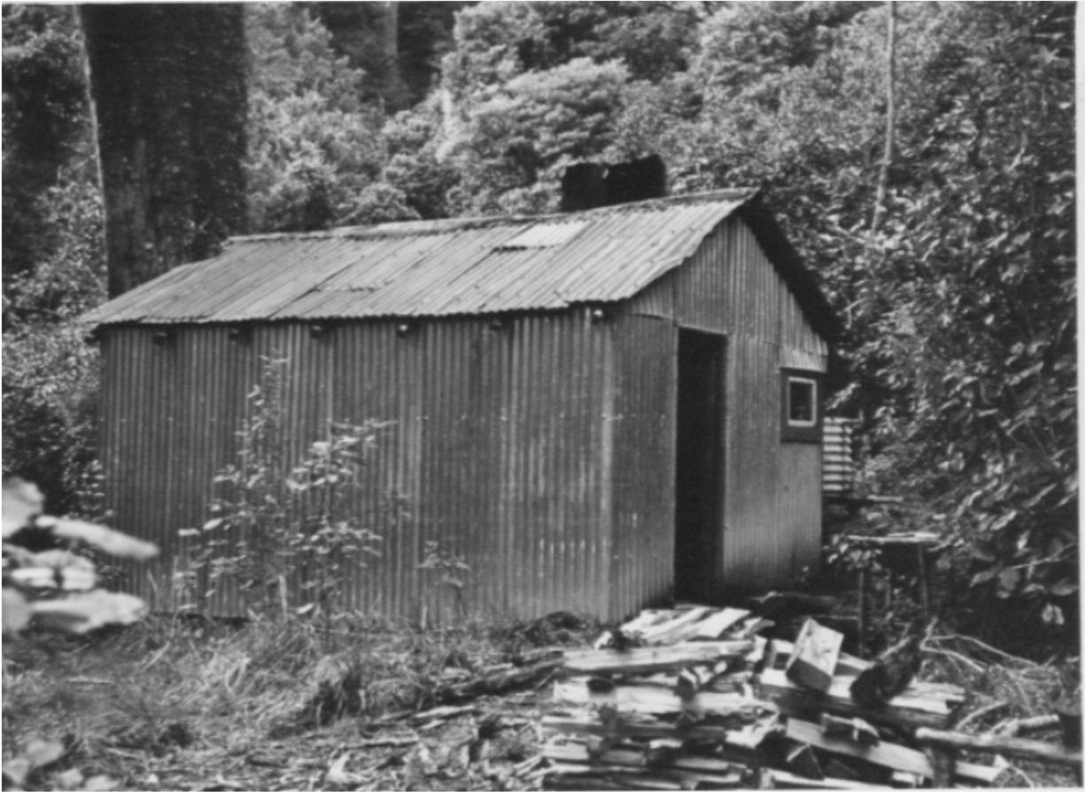 Goat Stream 1950