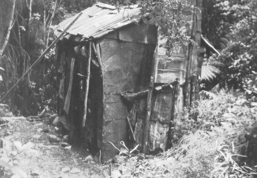 Kiwi Hut