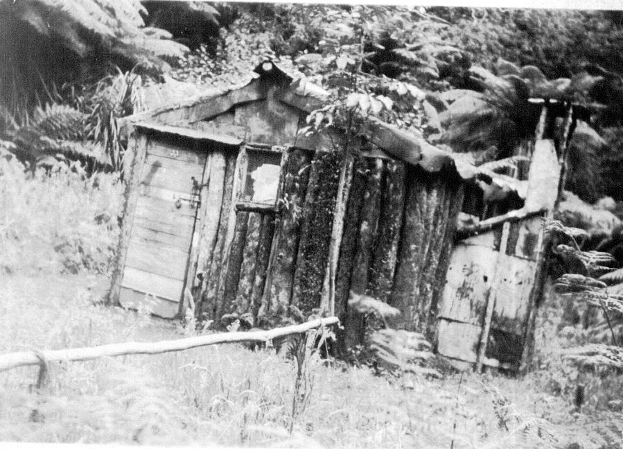 Whakanui Hut