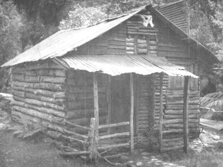 School holidays in bush log cabin were full of delights in 1953