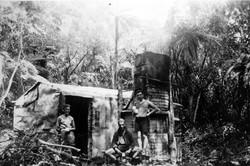 Wai Whare 1, 1932