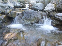 Brown's Stream