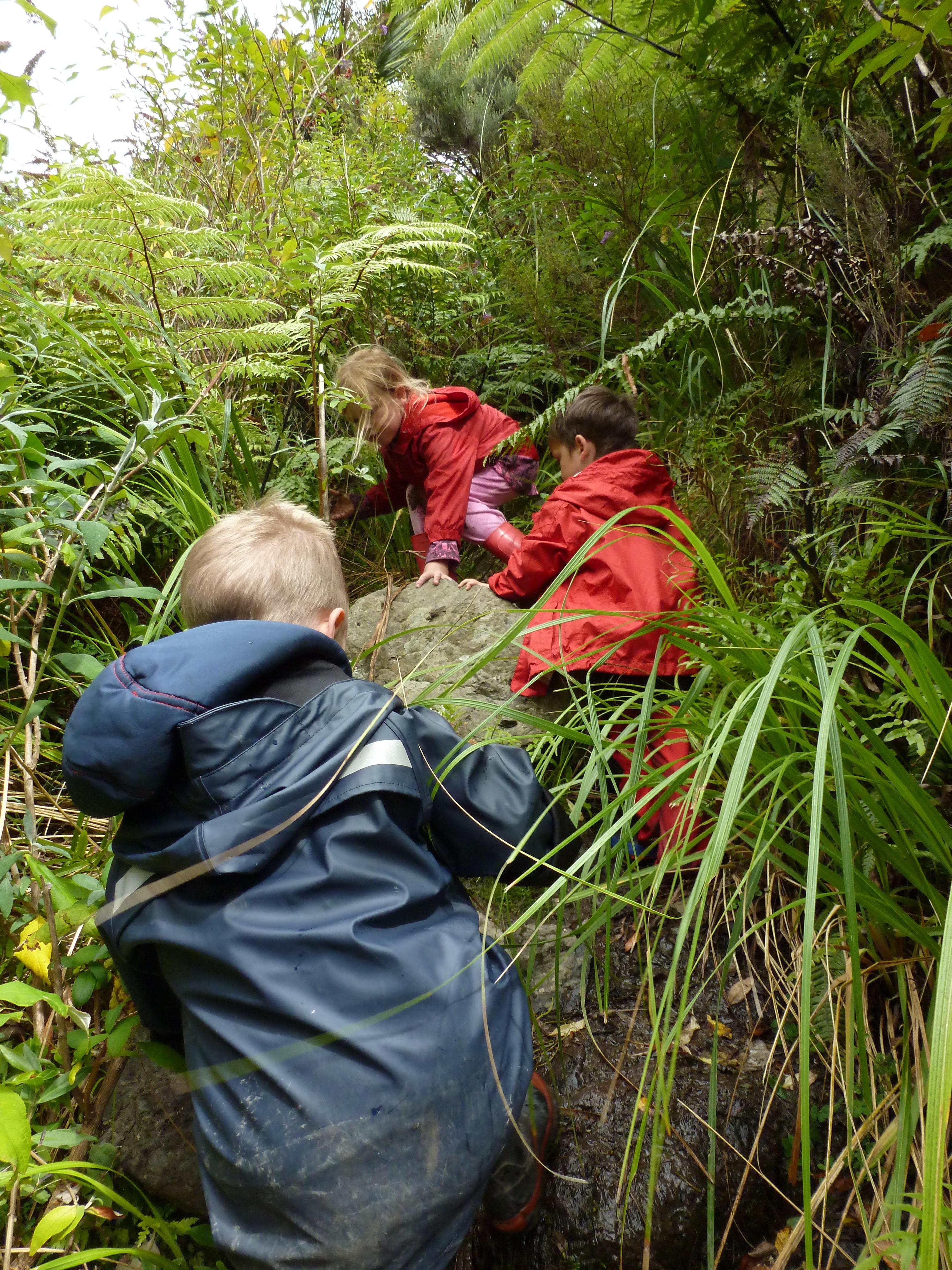 Kids climbing bush track
