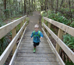 John Jamieson on Orongorongo Track