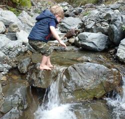 Exploring Brown's Stream