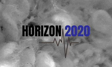 HORIZON 2020 (1).png