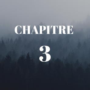 SERIE - Les processus génocidaires depuis le XX° siècle et leur reconnaissance (CHAPITRE 3)