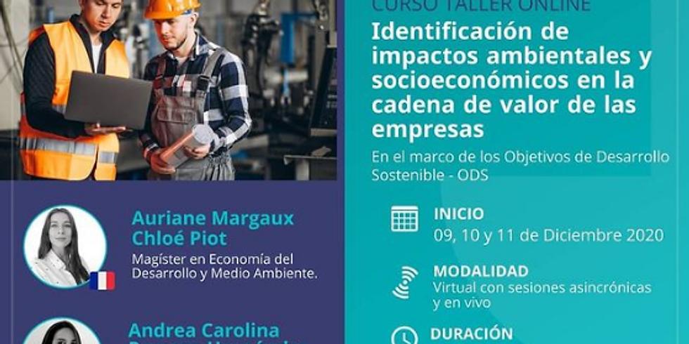 Taller: Identificación de impactos ambientales y socioeconómicos en la cadena de valor de las empresas