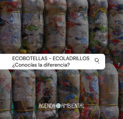 Plásticos de un solo uso: recurso para hoy, contaminación para mañana.