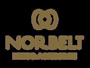 NORBELT-SEM-FUNDO_edited.png