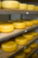 peynir-rafta.jpg