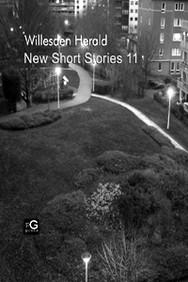 COVER_ New Short Stories 11.jpg