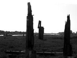 Port Richborough