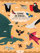 Comme un oiseau : découvre tout ce qui vole dans le ciel, avec ou sans plumes