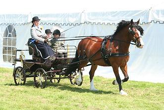 carriage.jpg