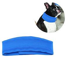dog cooling collar