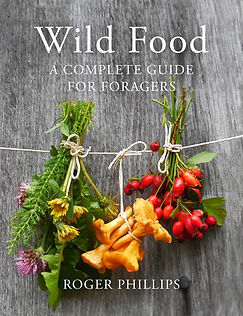 foraging books, books for foragers, foraging recipes
