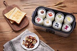 yoghurt makers, yogurt makers, digital yoghurt makers
