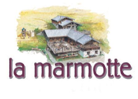 marmotte_1.jpg