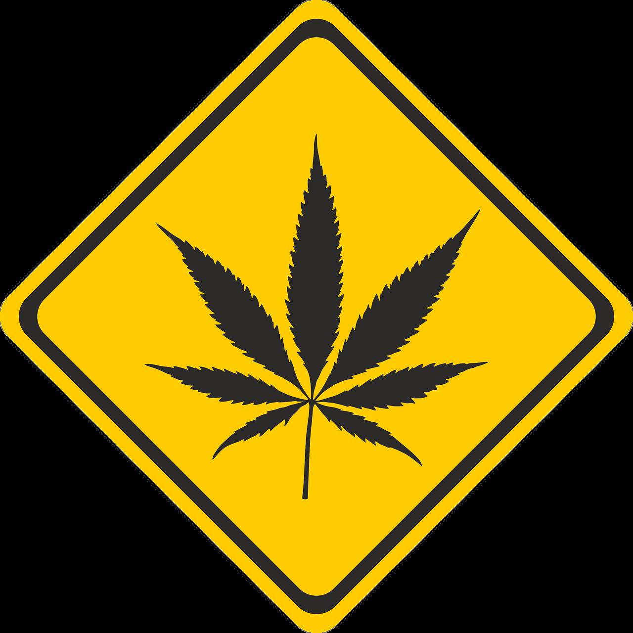 cannabis-2273796_1280