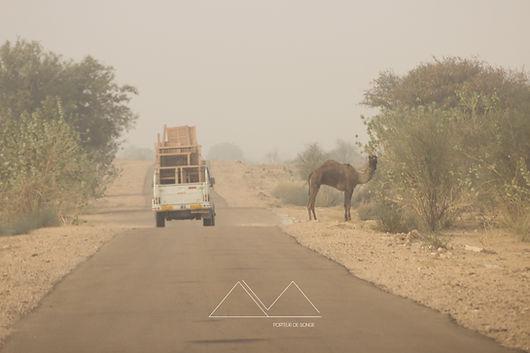 Rajasthan   Photographie   Aurelie Stapf