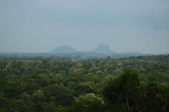 Sri Lanka   Photographie   Aurelie Stapf