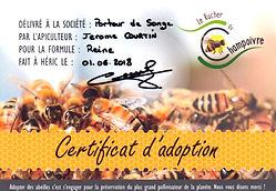 certificat d'adoption.jpg
