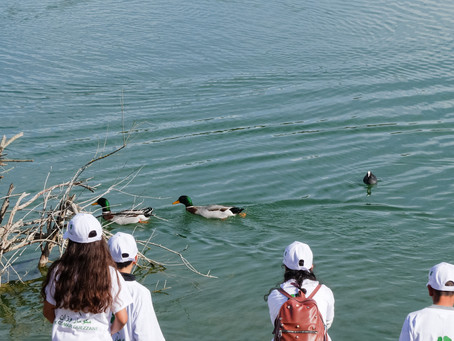 World Wetlands Day Event