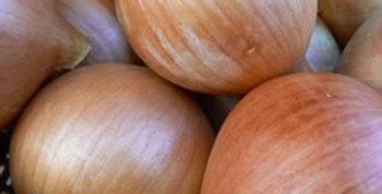 Onion (Ailsa Craig) seeds