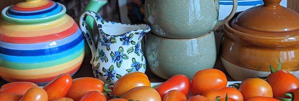 Tomatoes (San Marzano) seeds
