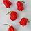 Thumbnail: Chilli (Carolina Reaper) seeds