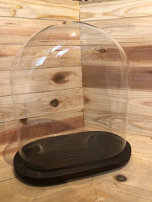 GLASS DOME +STAND