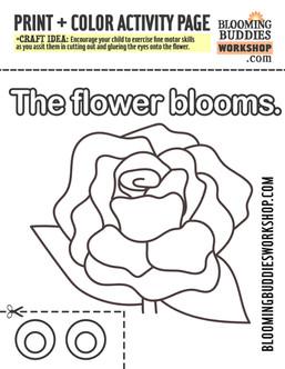 See more at BloomingBuddiesWorkshop.com