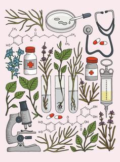 Spice Apothecary illustration.jpg