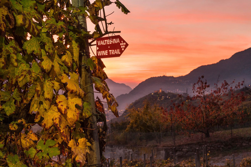 Valtellina Wine Trail. Correre per divertirsi e superare ogni limite.