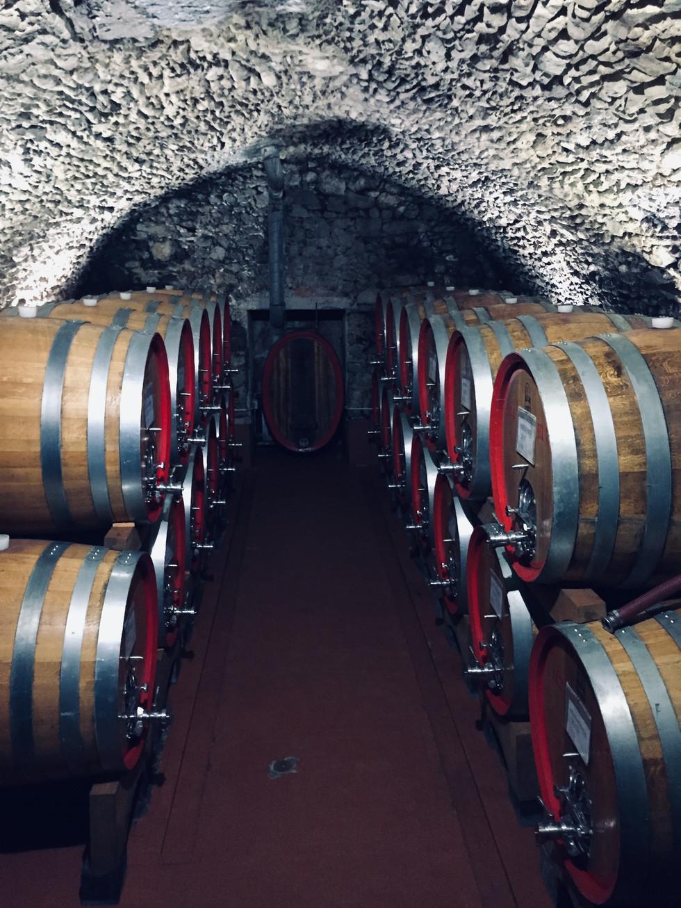 Visita alle numerose e storiche cantine della Valtellina. Dove il Nebbiolo delle Alpi fa da padrone.