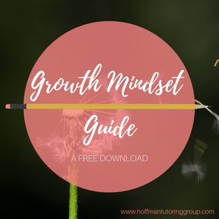 Growth Mindset Guide