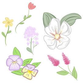 garden_JM.jpg