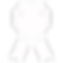 Free SpyCo Diploma icon.png