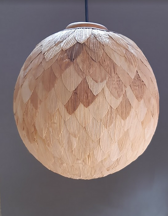 Lámpara de Techo Globo