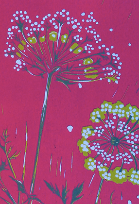 #16 Queen Anne's Lace greeting card